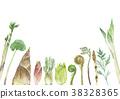 산채, 산나물, 봄 야채 38328365
