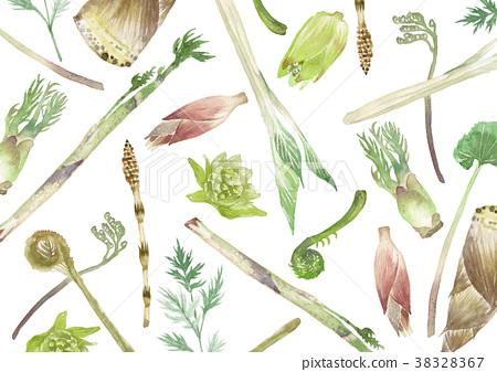 山野菜 春蔬 春天的氣息 38328367