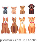 Cute Purebred Dogs Cartoon Flat Vectors Icons Set 38332785