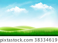 Nature summer background with green grass 38334619