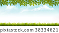 Nature spring background with grass and leaves 38334621