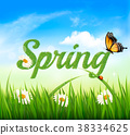 Spring background with grass, sky and a butterfly 38334625