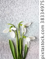 Snowdrops bouquet on shiny silver background 38334975