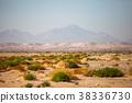 Desert view 38336730