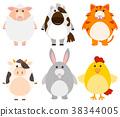 Animals with happy smile 38344005