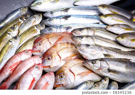Assorted fish 38345236