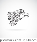 Vector of an eagle head on white background. Bird. 38346725