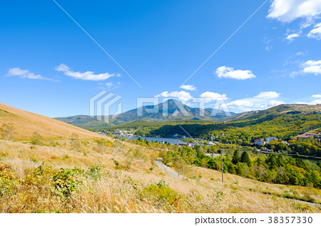 비너스 라인에서 원하는 蓼科山 (가을) 38357330