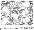 Background of Mango and Marian Plum Fruits 38362307