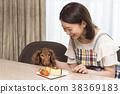 กลุ่มสุนัขพันธุ์ดัชชุนและเพศหญิงขนาดเล็ก 38369183