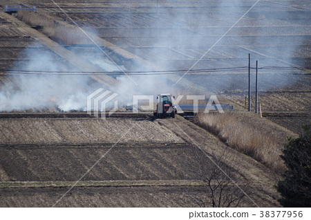 트랙터의 흰 연기? 밭을 태우는? 38377956