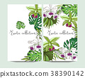 Vector vertical exotic collection banners  38390142