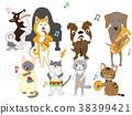 แมว,สุนัข,สุนัช 38399421