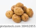 馬鈴薯的 38402855