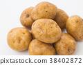 馬鈴薯的 38402872