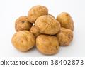 馬鈴薯的 38402873