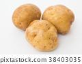 馬鈴薯的 38403035
