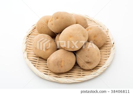 蔬菜 土豆 馬鈴薯 38406811