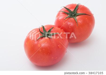 蕃茄 38417105