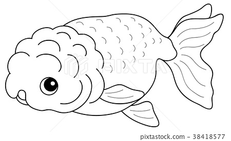 Coloring Book Freshwater Fish Goldfish 38418577