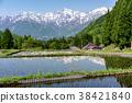 北阿爾卑斯山和稻田奧尼村 38421840