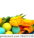 egg, easter, tulip 38423148