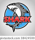 Cartoon shark mascot with blue circle on gray back 38424500