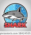 Cartoon shark mascot with blue circle 38424505