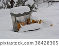 扫雪机 冬天 冬 38428305