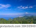 ภูเขาฟูจิ,ภูเขาไฟฟูจิ,พืชสีเขียว 38430940