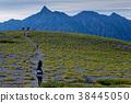 북 알프스 · 双六岳 정상 평원가는 등산객과 야리가 타케 38445050