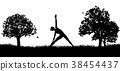 Yoga or Pilates in the Park Silhouette 38454437