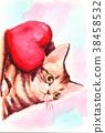 猫 猫咪 小猫 38458532
