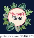 热带 背景 夏天 38462523