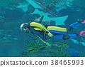 잠수, 수중, 산소 38465993