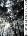 아침 해, 아침 햇빛, 빛줄기 38472400