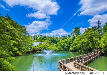 東京Inokashira公園風景 38476554