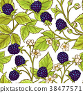 blackberry vector pattern 38477571