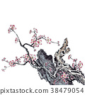 梅花 花朵 花卉 38479054
