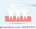 Toothbrush brushing teeth on gum 38481955