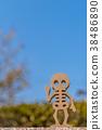 해골 이미지 38486890