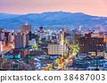 Hakodate, Japan Cityscape 38487003
