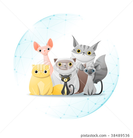 Pet care concept with cats  38489536