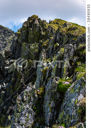 rocky cliffs of Fagaras mountains in summertime 38490930