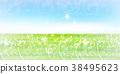 tender, green, verdure 38495623