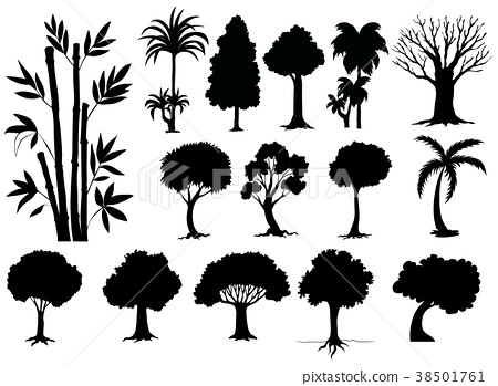 Sihouette different types of trees 38501761