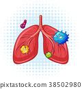 human, lungs, virus 38502980