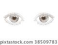 Woman eyes. Hand drawn sketch 38509783