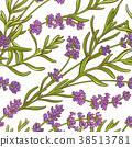 lavender plant vector pattern 38513781