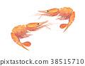 纽扣虾 38515710
